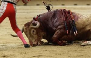 REU-SPAIN_-100-760x484 bullfight
