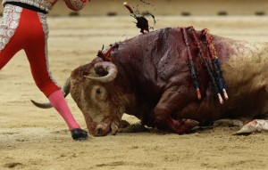 REU-SPAIN_-100-760x484 bullfight